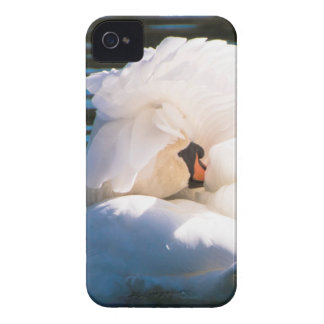 Swan Prince iPhone 4 Case-Mate Case