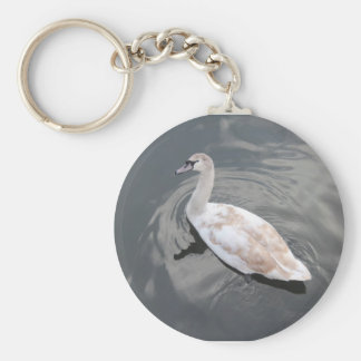 Swan product key ring
