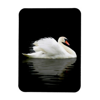 Swan Rectangular Photo Magnet