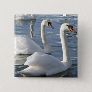 Swan Reflections Pin