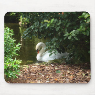 Swan resting mouse pad