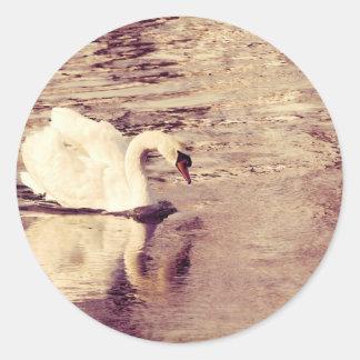 Swan Round Sticker