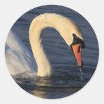 Swan Round Stickers