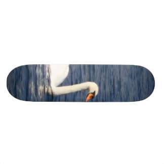 Swan Skate Decks