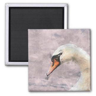 Swan Square Magnet