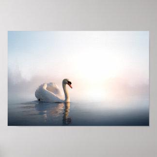 Swan Sunrise Poster