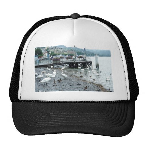 Swans and ducks in Lake Lucerne Trucker Hat