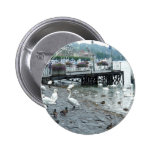 Swans and ducks in Lake Lucerne Pinback Buttons