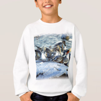 Swans and Seagulls in Winter Sweatshirt