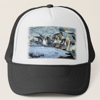 Swans and Seagulls in Winter Trucker Hat