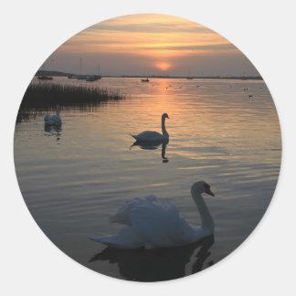 Swans at Sunset Classic Round Sticker