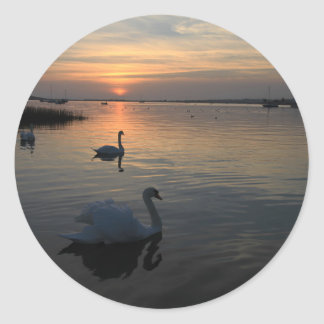 Swans at Sunset Round Sticker