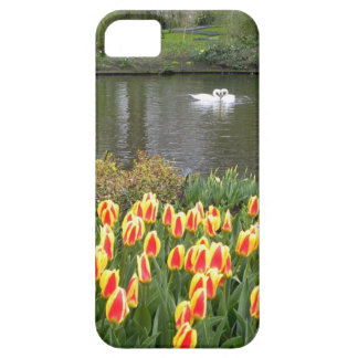 Swans by a lake with tulips, Keukenhof iPhone 5 Cases