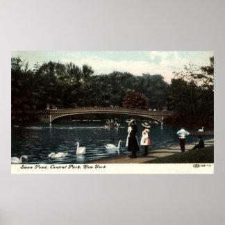 Swans Central Park New York Repro Vintage 1908 Print