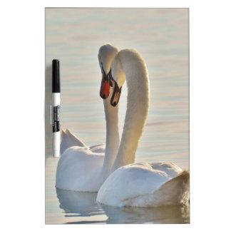 Swans Dry Erase Board