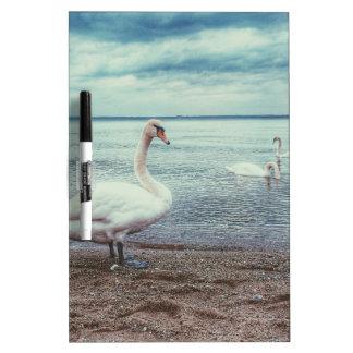 Swans Dry-Erase Whiteboard