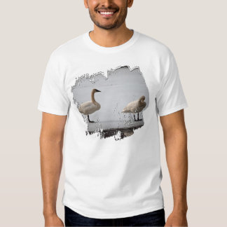 Swans Grooming at Water's Edge Shirt