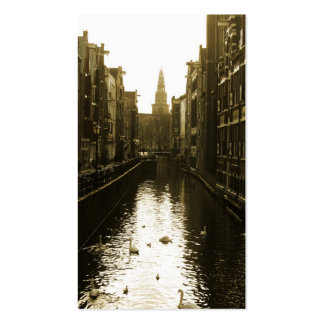 Swans in Amsterdam Canal Business Cards