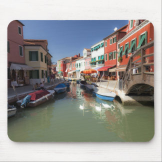 Swans in canal, Burano Island, Venice, Italy 2 Mouse Mat