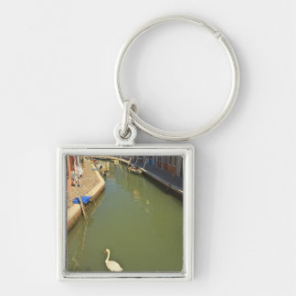 Swans in canal, Burano Island, Venice, Italy Silver-Colored Square Key Ring
