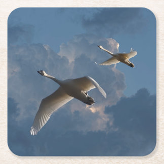 SWANS IN FLIGHT SQUARE PAPER COASTER