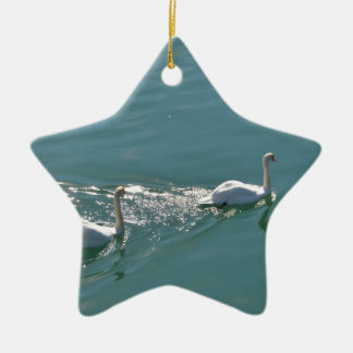 Swans In Sunlight Ceramic Star Decoration
