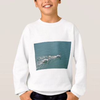 Swans In Sunlight Sweatshirt