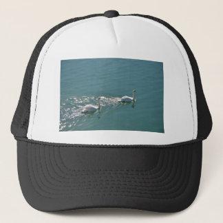 Swans In Sunlight Trucker Hat