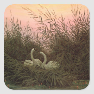 Swans in the Reeds c 1820 Square Sticker