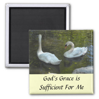 Swans Inspirational Message Square Magnet