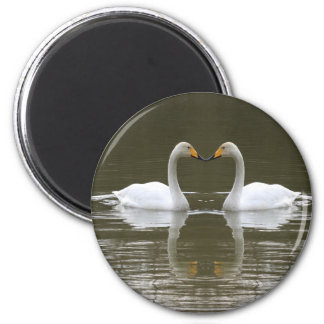 Swans Refrigerator Magnet