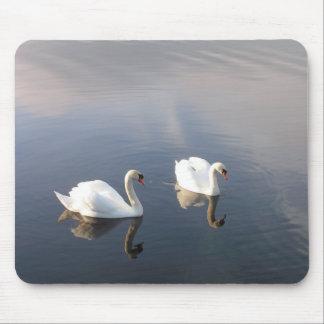 swans mouse mat