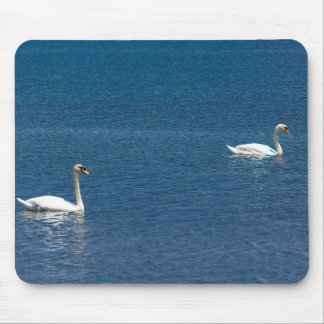 Swans Mouse Pads