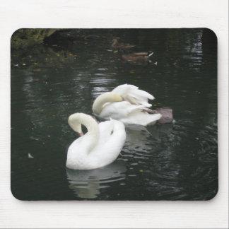 Swans Mousepads