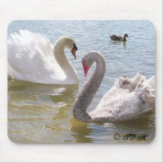 swans mousepad