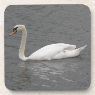 Swans on the River Cork Coaster