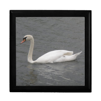 Swans on the River Gift Box