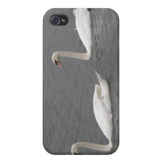 Swans on the River  iPhone 4 Cover