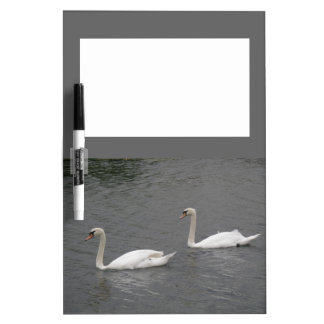 Swans on the River Memo Board
