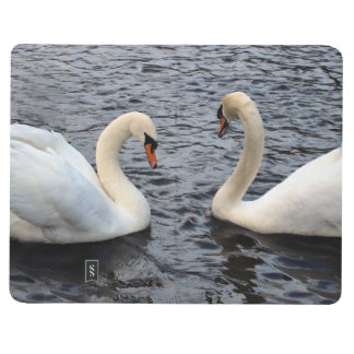 Swans on water journal