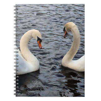 Swans on water notebooks
