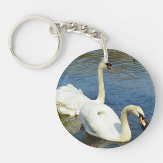 Swans Tehidy Country Park Cornwall England Key Ring