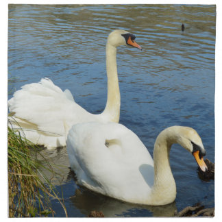 Swans Tehidy Country Park Cornwall England Napkin