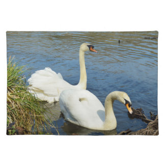 Swans Tehidy Country Park Cornwall England Placemat