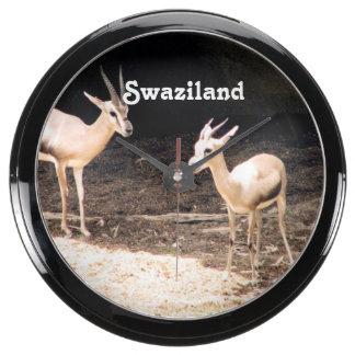 Swaziland Aquavista Clocks