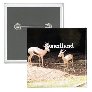 Swaziland Pinback Buttons