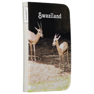 Swaziland Kindle Covers
