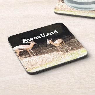 Swaziland Coasters