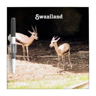 Swaziland Dry Erase Board