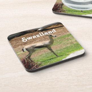 Swaziland Gazelle Coaster